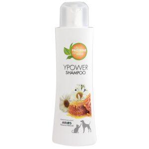 Honey Ypower Shampoo